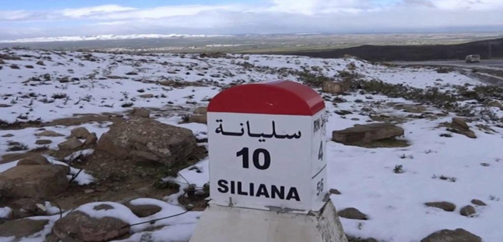 don du sel gouvernorat siliana